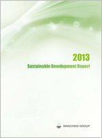 Sustainable Development Report 2013