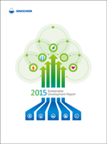 Sustainable Development Report 2015